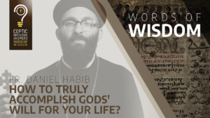 How to TRULY accomplish Gods' will for your life Fr. Daniel Habib